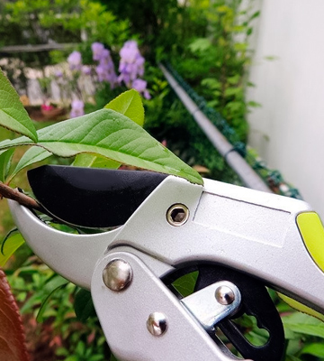 Review of Gardenite GT-3142 Power Drive Pruning Shears