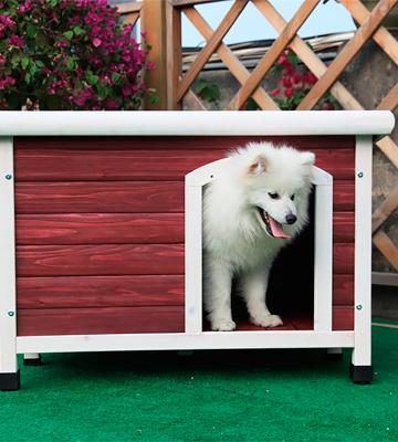 Review of Petsfit Dog House Outdoor