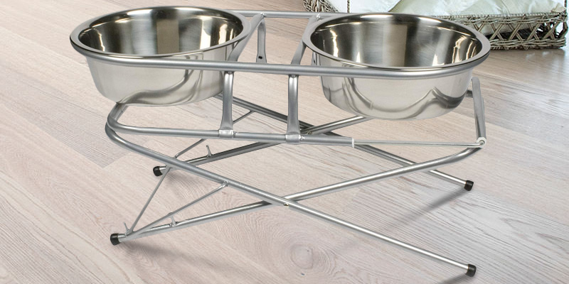 PetZone Stainless Steel Adjustable Elevated in the use