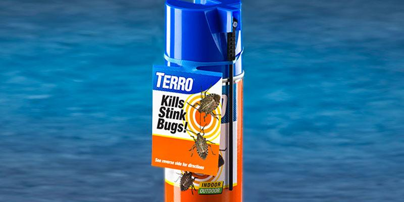 Terro Stink Bug Killer in the use