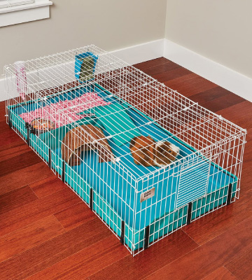 Review of MidWest Homes for Pets Guinea Pig Cage