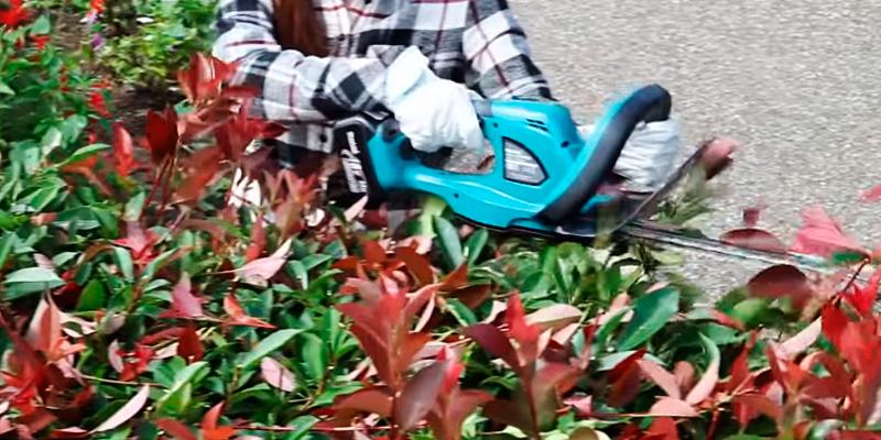 Review of Makita XHU02Z 18V LXT Hedge Trimmer
