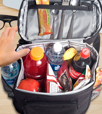 Review of Everyday B-100 Cooler Lunch Bag