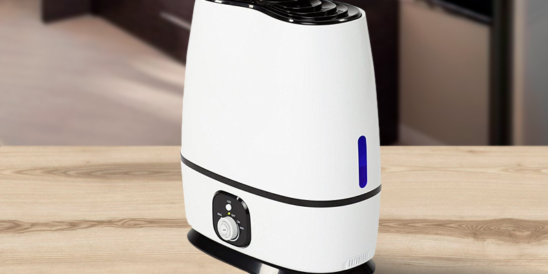Everlasting Comfort Ultrasonic Humidifier with Adjustable Knob and 360 Deg. Nozzles in the use