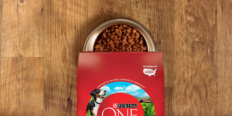 Review of Purina 14941 ONE SmartBlend Dry Dog Food