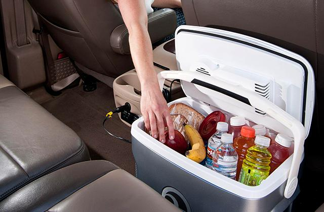 Best Car Cooler Bags