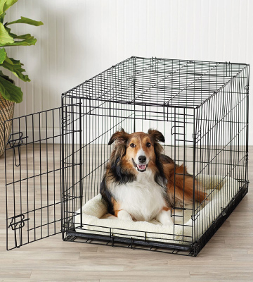 Review of AmazonBasics Folding Metal Dog or Pet Crate Kennel with Tray