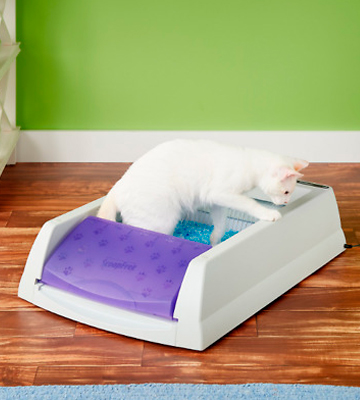 Review of PetSafe ScoopFree Self-Cleaning Cat Litter Box Tray Refills