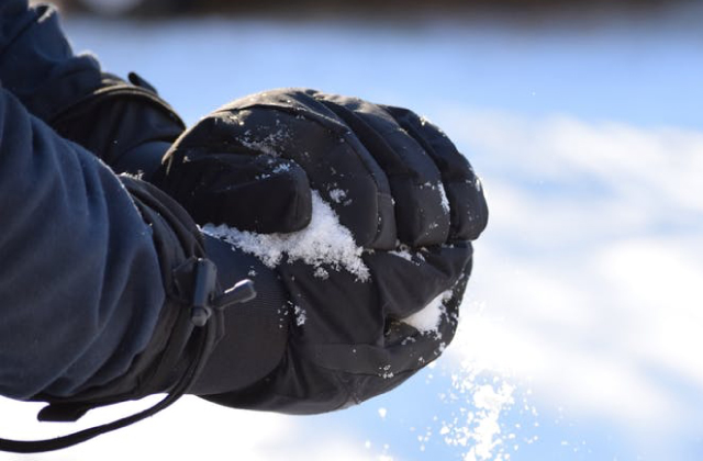Best Waterproof Gloves