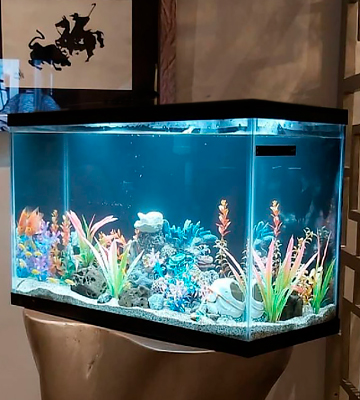 Review of Aqueon 100528607 10 Gallon Aquarium