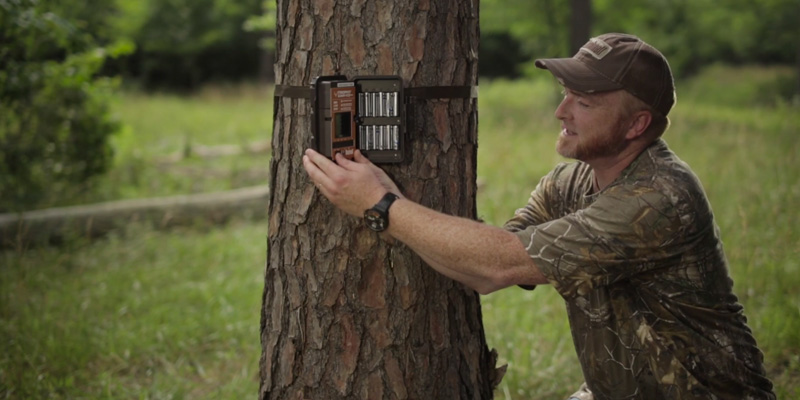 Bushnell Wireless Trail Camera in the use