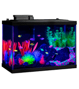 GloFish NV33823 20 Gallon Aquarium Kit Fish