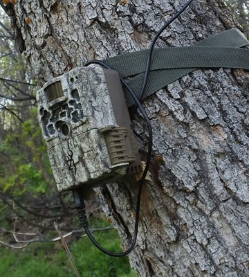 Review of Browning Trail Cameras BTC-5 Strike Force HD Camera