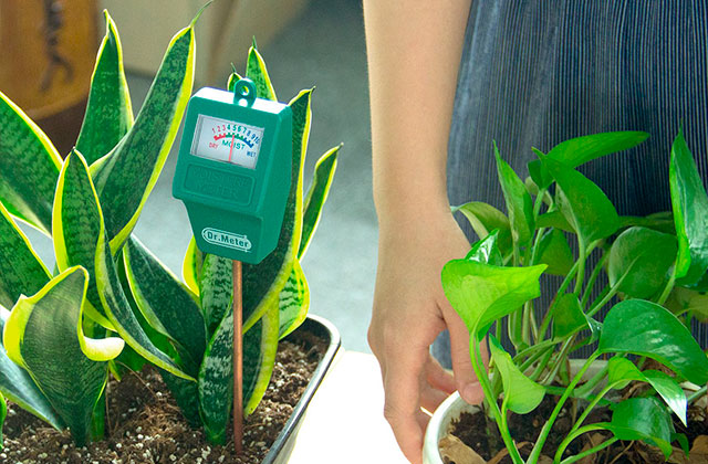 Comparison of Soil Moisture Meters