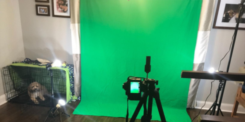 Review of Fancierstudio FBA_H804-69G Green Screen Background Stand