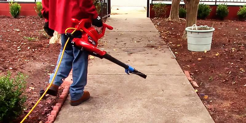 Review of Toro 51619 Ultra Leaf Blower & Vacuum