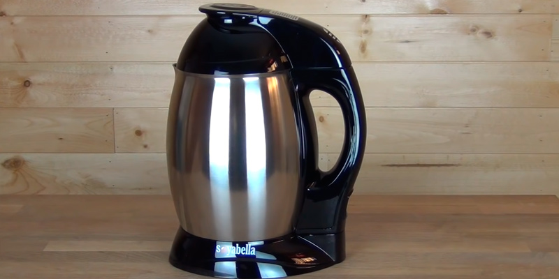 Review of Tribest SB-130 Soymilk Maker