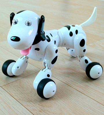 Review of SainSmart Smart Dog RC Robot