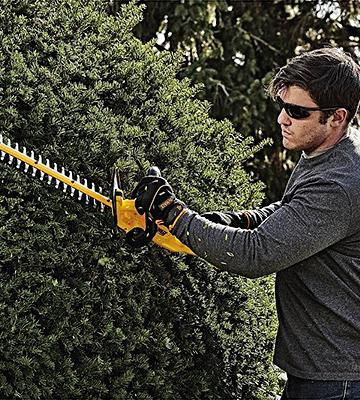 Review of DEWALT DCHT820P1 with 5AH Pack 20 V Hedge Trimmer