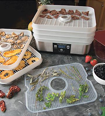 Review of Hamilton Beach 32100A Food Dehydrator