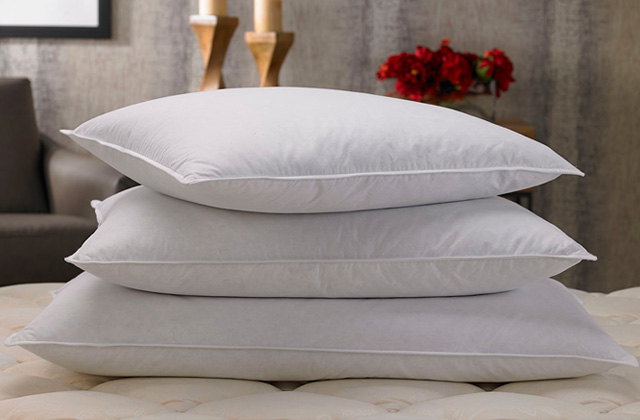 Best Down Pillow Sets