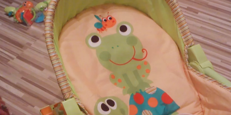 Detailed review of Fisher-Price T2518 Newborn-to-Toddler Portable Rocker