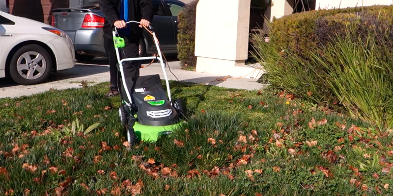 GreenWorks 25022 20-Inch 12 Amp Corded Lawn Mower in the use
