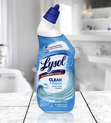 Review of Lysol Clean & Fresh Toilet Bowl Cleaner