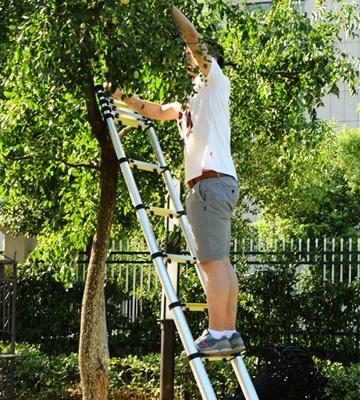 Review of Ollieroo EN131 Telescoping Extension Ladder