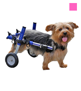 Walkin' Wheels Veterinarian Approved Dog Wheelchair
