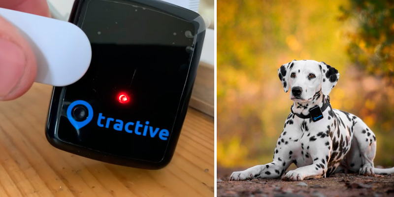 Review of Tractive 3G GPS Dog Tracker