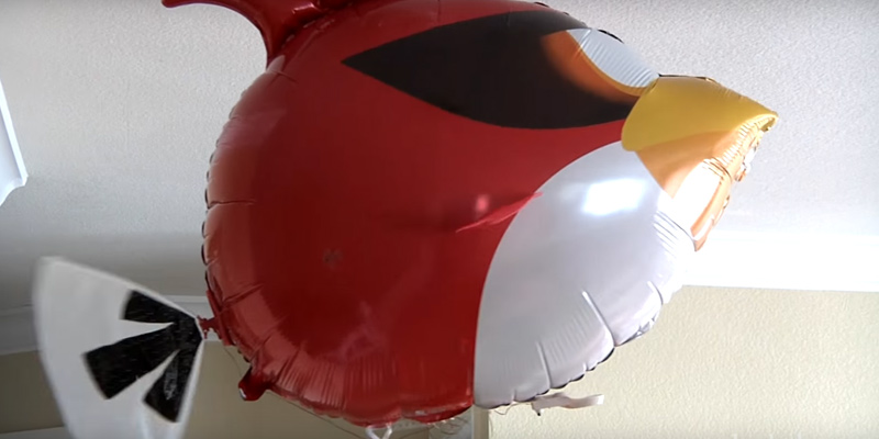 Review of William Mark Air Swimmers Angry Birds