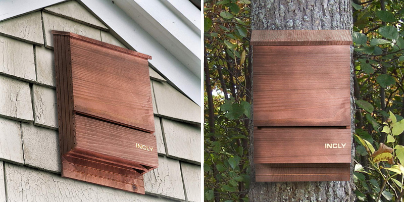 Review of INCLY Natural Cedar Wood Bat House Kit for Outdoors