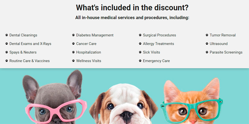 Pet Assure America's Veterinary Discount Plan in the use