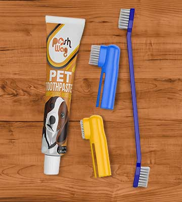 Review of Ortz Dog Toothpaste and Toothbrush Set