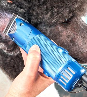 Review of Oster Turbo A5 2-Speed Pet Clipper