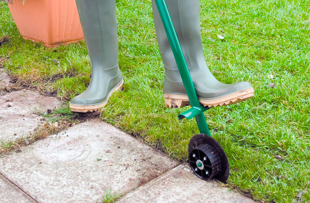 Best Manual Lawn Edgers