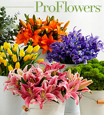 Review of ProFlowers Online Flower Delivery