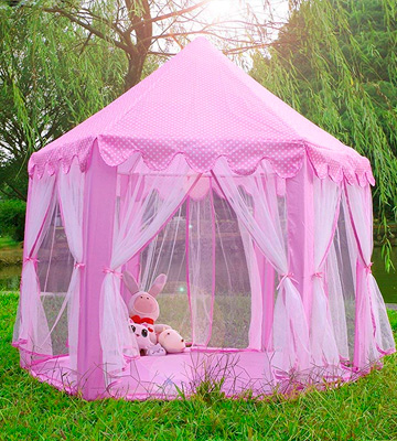 Review of Monobeach Princess Tent Girls Large Playhouse