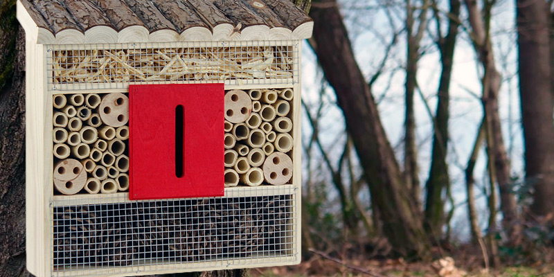 Review of Gardirect Insect Hotel Bee and Butterfly House