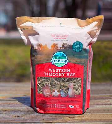 Review of Oxbow Animal Health Western Timothy Hay Food for Small Pets
