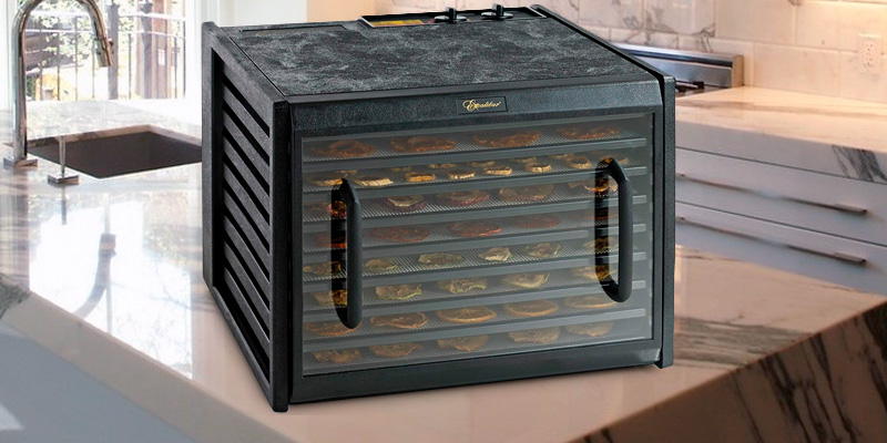 Review of Excalibur 3926TCDB Dehydrator with Clear Door and Timer