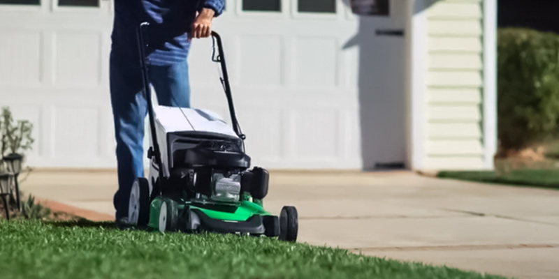 Lawn-Boy 10734 Self Propelled Gas Lawn Mower in the use