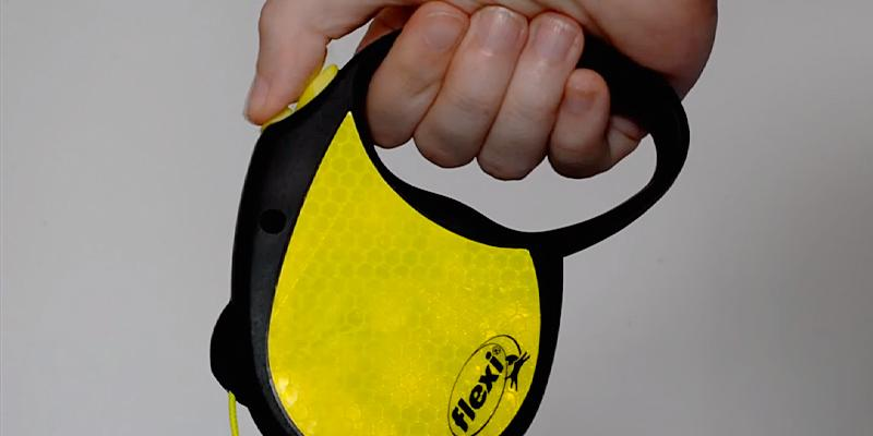 Flexi Neon Retractable Dog Leash in the use