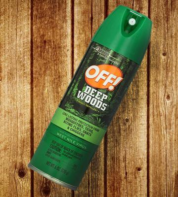 Review of OFF Deep Woods Insect Repellent