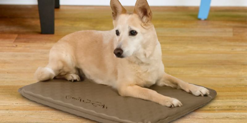 Review of K&H Pet Products KH1080 Outdoor Heated Dog Bed
