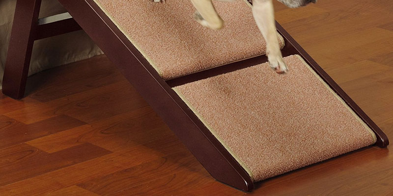 Review of Pet Studio Pine Frame Dog RampSteps