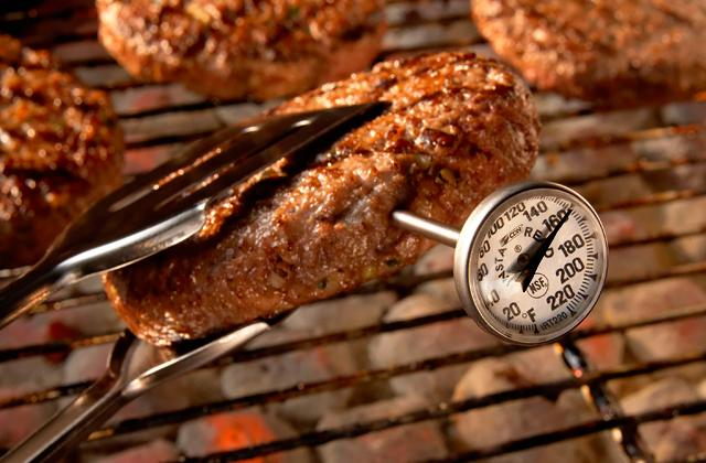 Best Cooking Thermometers for Accurate and Precise Temperature Monitoring