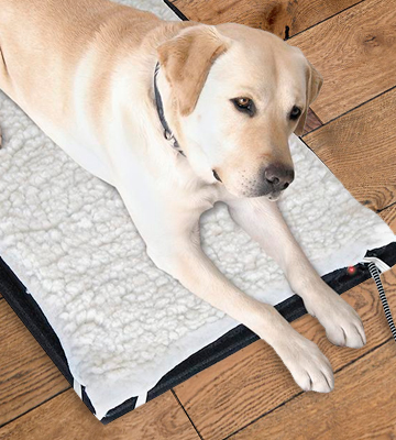 Review of Farm Innovators HM-100L Heated Pet Mat