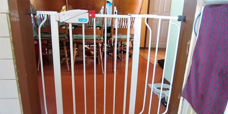 Review of Regalo Easy Step Walk Thru Child Gate